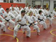 Porta's Karate Academy