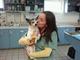 Somerset Veterinary Group
