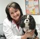 Dr. Lisa  Wiggins, Owner