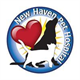New Haven Pet Hospital