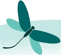 Dragonfly Massage & Bodywork