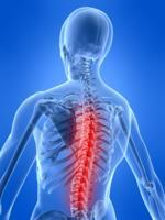 Chiropractic Fitness    (South Charlotte)
